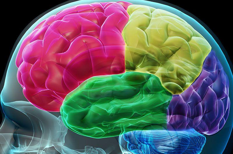 10 No-Brainer in der Thesis, die belohnen, entspannen, motivieren
